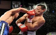 rząd zasłużył jak ten bokser na ringu