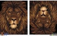 Grozny jak lew