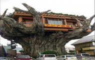 Domek na drzewie - made in china