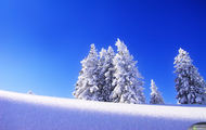 Zima 3
