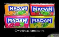 kamasutra 2 xd xxx