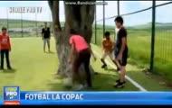 Boisko z drzewem – możliwe jedynie w Rumunii