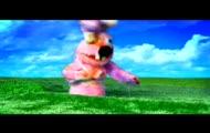 Raggae Rabbits - hymn narodowy
