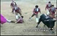 Matadorzy bronią swojego kolegę przed bykiem