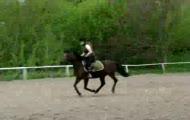 Pasja And Oliwka Pierwsze skoki :D