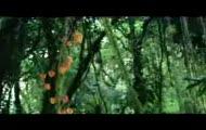 Adam i Ewa reklama