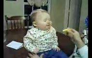 Pierwszy kontakt z cytryną