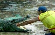 pokaz z krokodylem xxx