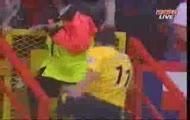 robin van persie charlton goal